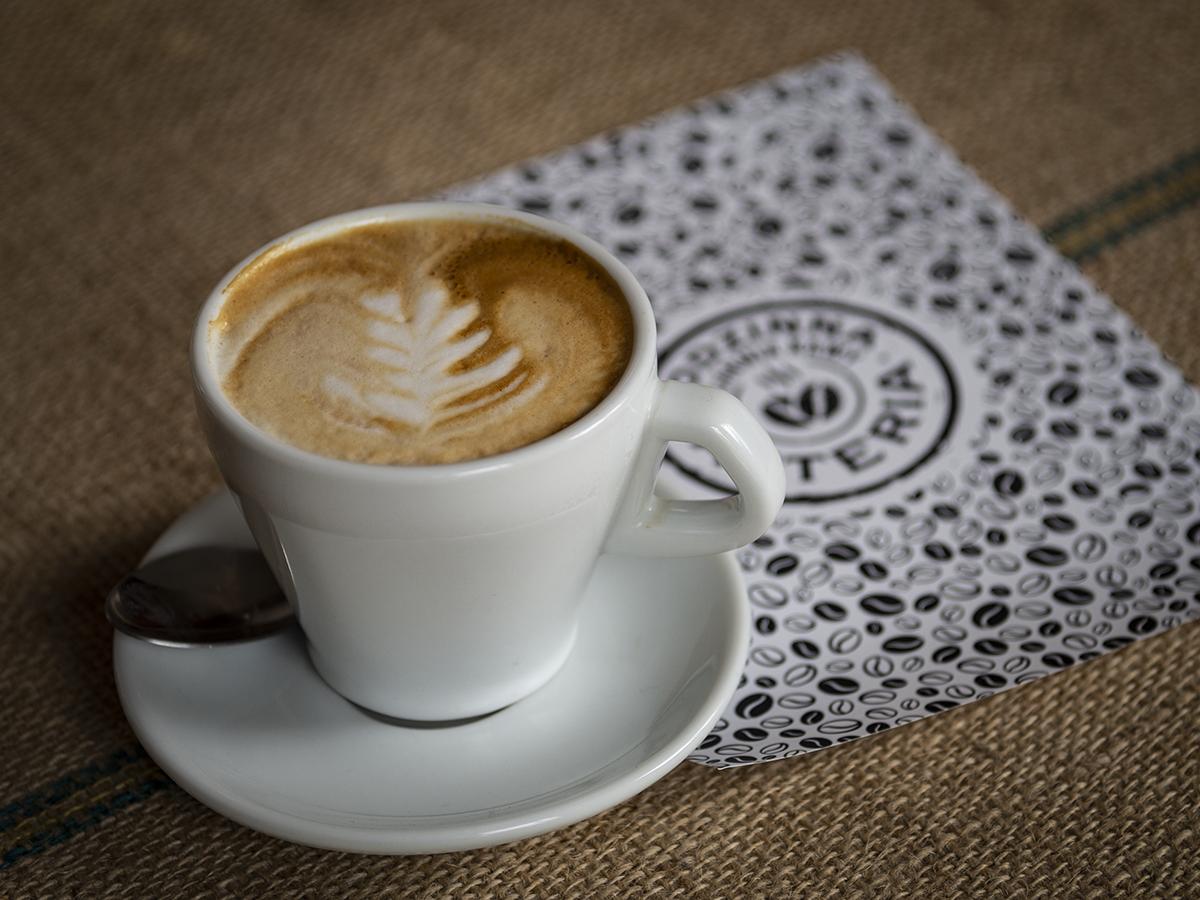 Palarnia kawy Asteria