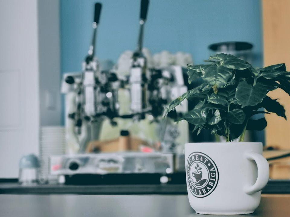 Coffee Runner na Janowie! fot. FB Coffee Runner