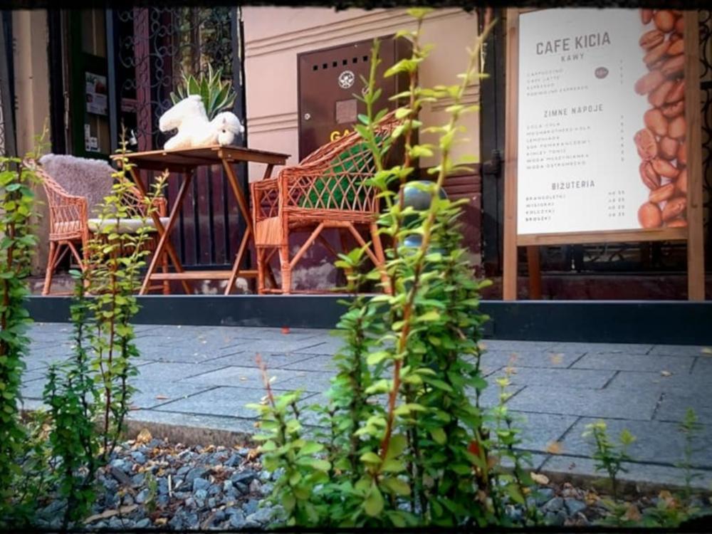 Kawowe otwarcia - Kafe Kicia fot. FB Kafe Kicia