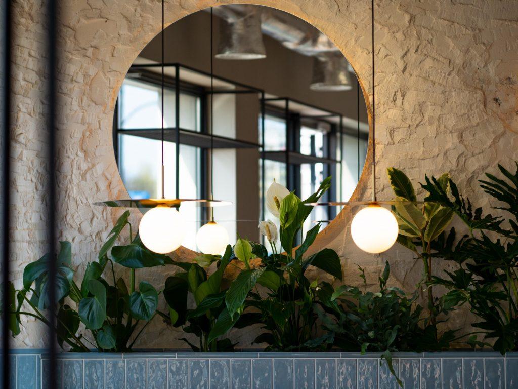 Na zdjęciu widać fragment wystroju lokalu - zielone rośliny i okrągłe lustro zawieszone na ścianie.