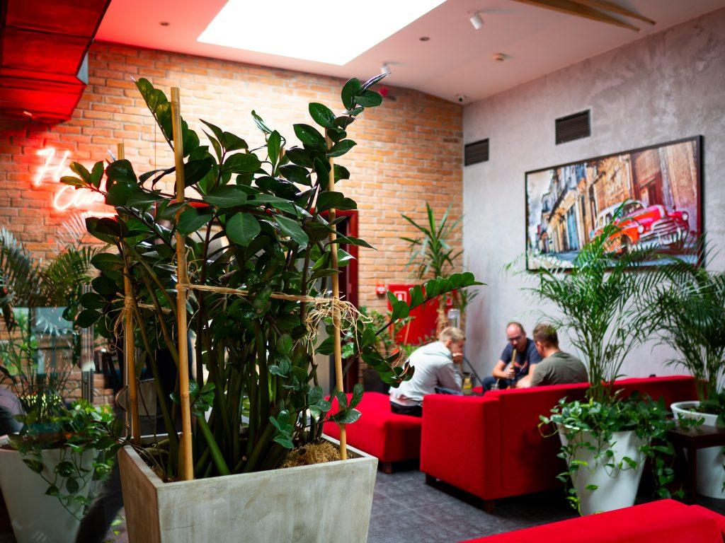 Na zdjęciu widać wnętrze restauracji Old Havana. Stolik wśród zielonych roślin, przy którym trzech mężczyzn pali shishę.